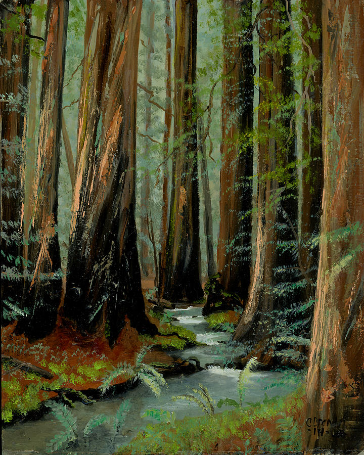 Redwood Forest Stream Painting by Cecilia Brendel Redwood Tree Painting