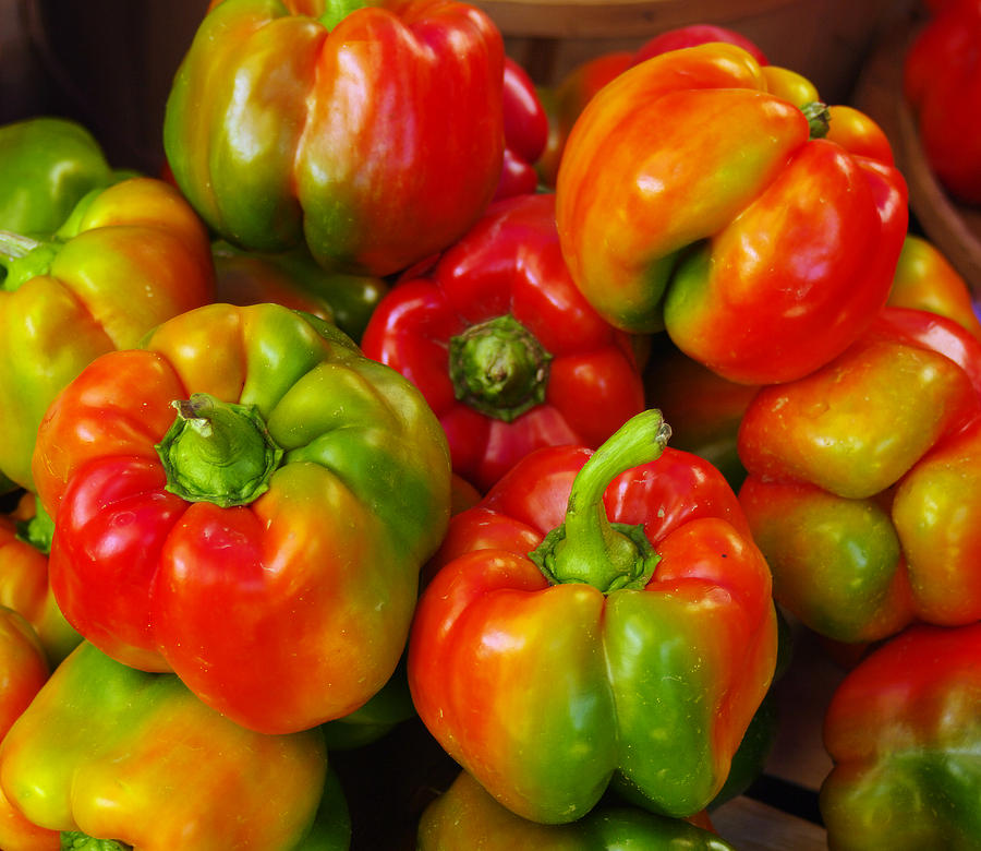 b76c686bb866 Bell Pepper Photograph - Red-yellow-green Peppers by John Ayo