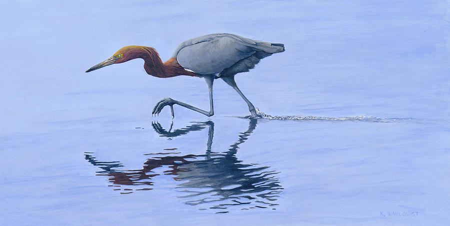 Bird Painting - Reddish Egret by Kirsten Wahlquist
