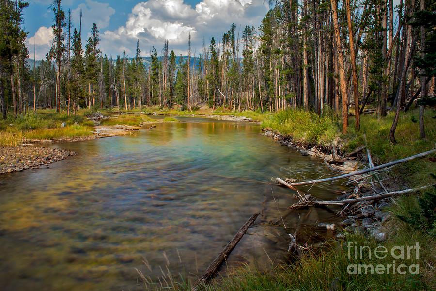 Rocky Mountains Photograph - Redfish Lake Creek by Robert Bales