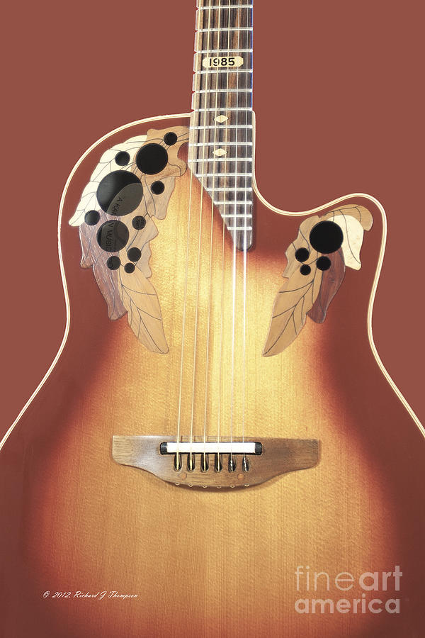 Redish-Brown Guitar On Redish-Brown Background by Richard J Thompson