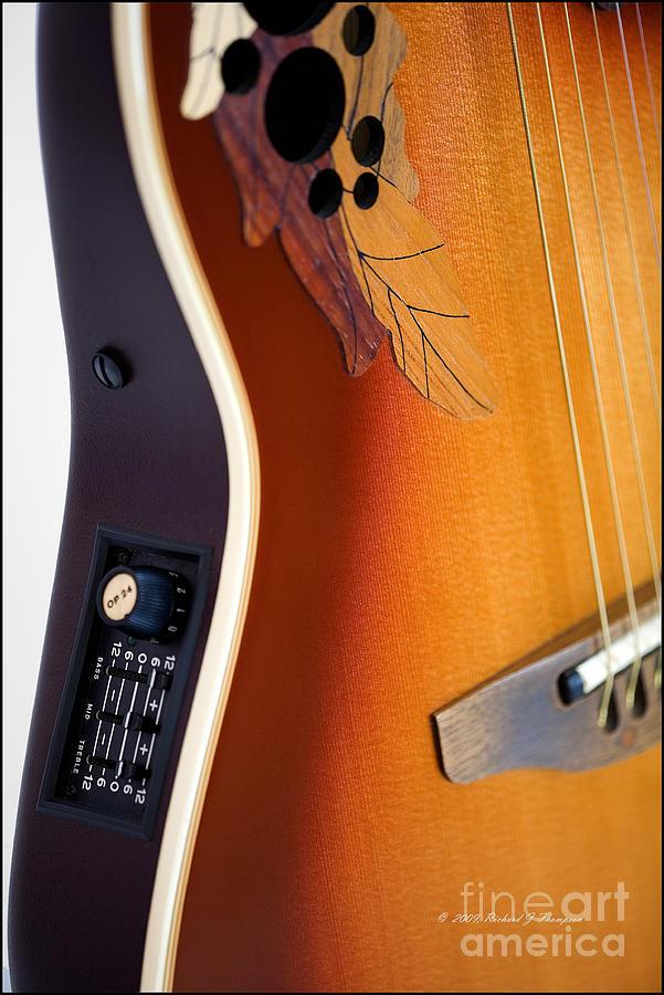 Redish-brown Guitar by Richard J Thompson
