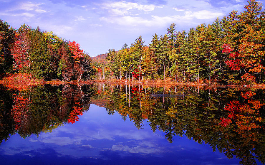 Autumn Road Photograph - Reflected Autumn Lake by William Carroll