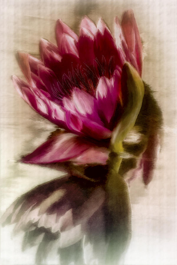 Digital Art Digital Art - Reflected Waterlily by Jill Balsam