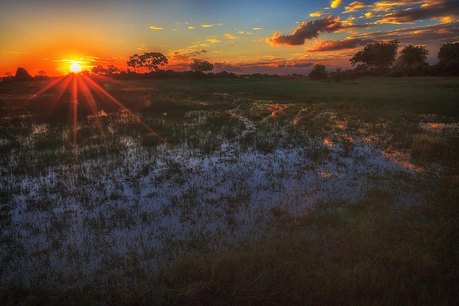Africa Photograph - Reflecting On A Duba Plains Sunset by Sylvia J Zarco