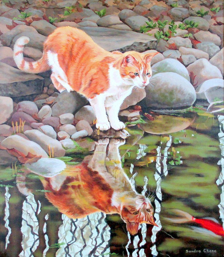 Cat Painting - Reflecting by Sandra Chase