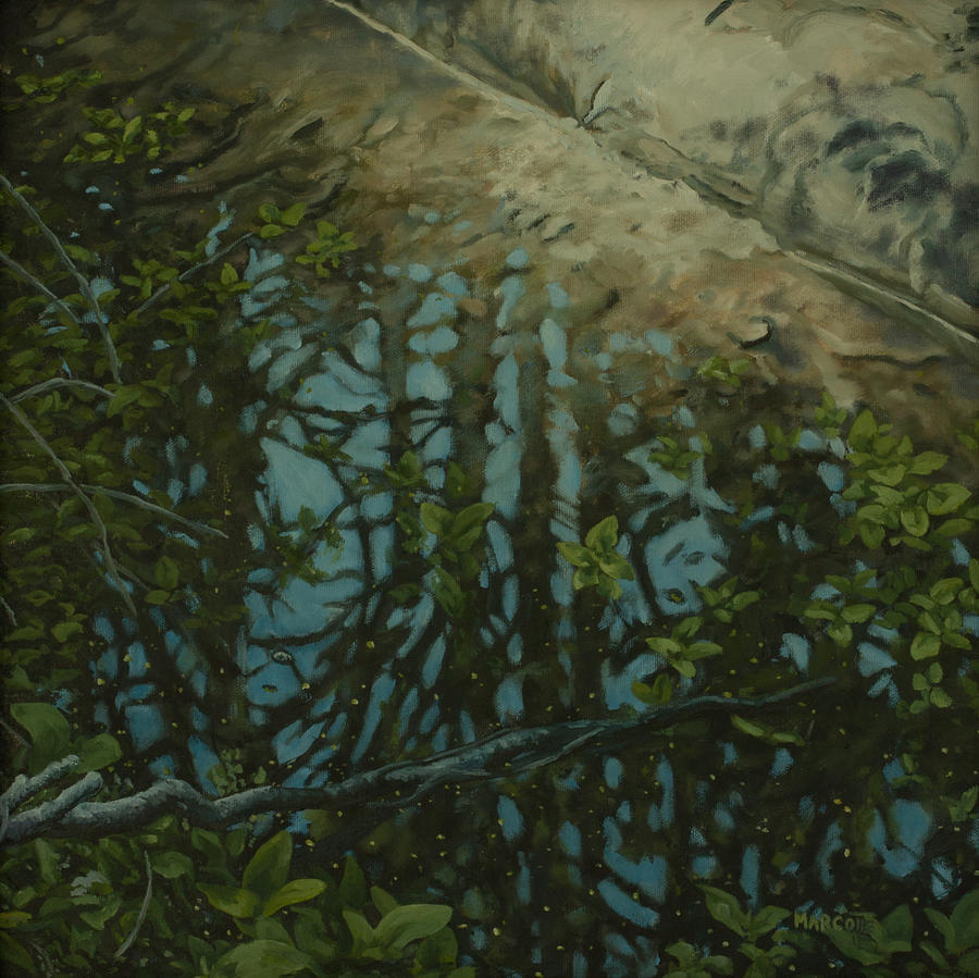Bruce Peninsula National Park Painting - Reflection II by Michael Marcotte