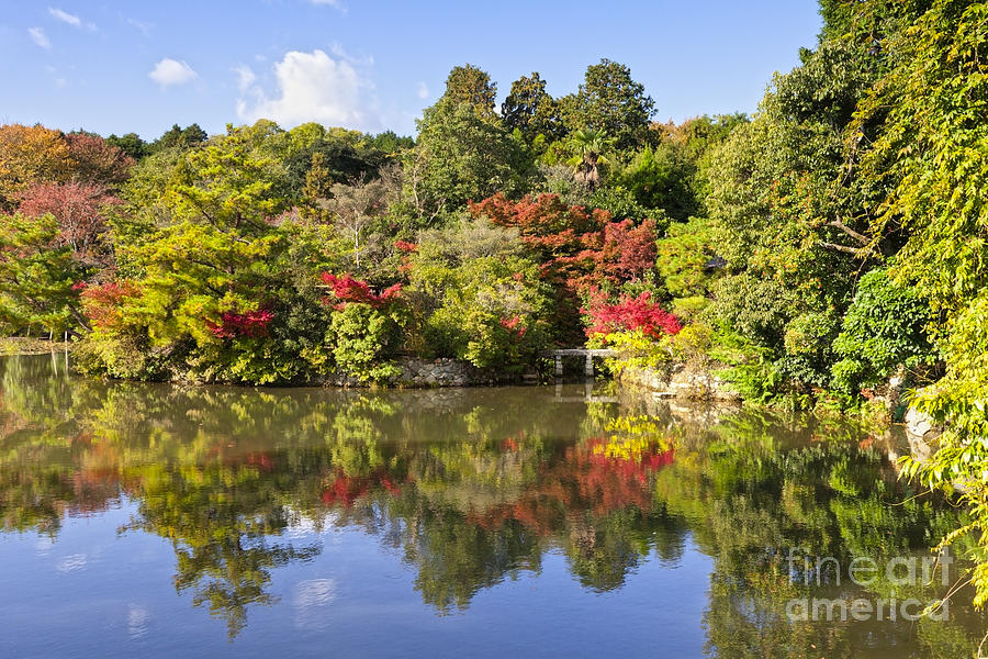 Autumn Photograph - Reflection In Kyoyochi Pond In Autumn Ryoan-ji Kyoto by Colin and Linda McKie