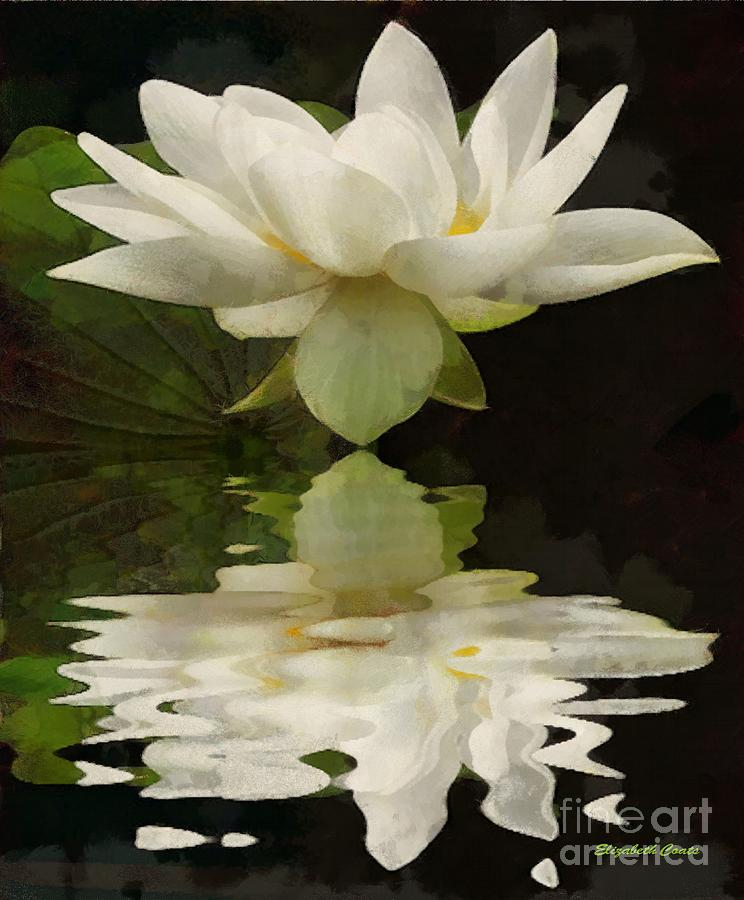 Floral Painting - Reflection Of Beauty by Elizabeth Coats