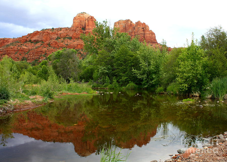 Sedona Photograph - Reflection Of Cathedral Rock by Carol Groenen
