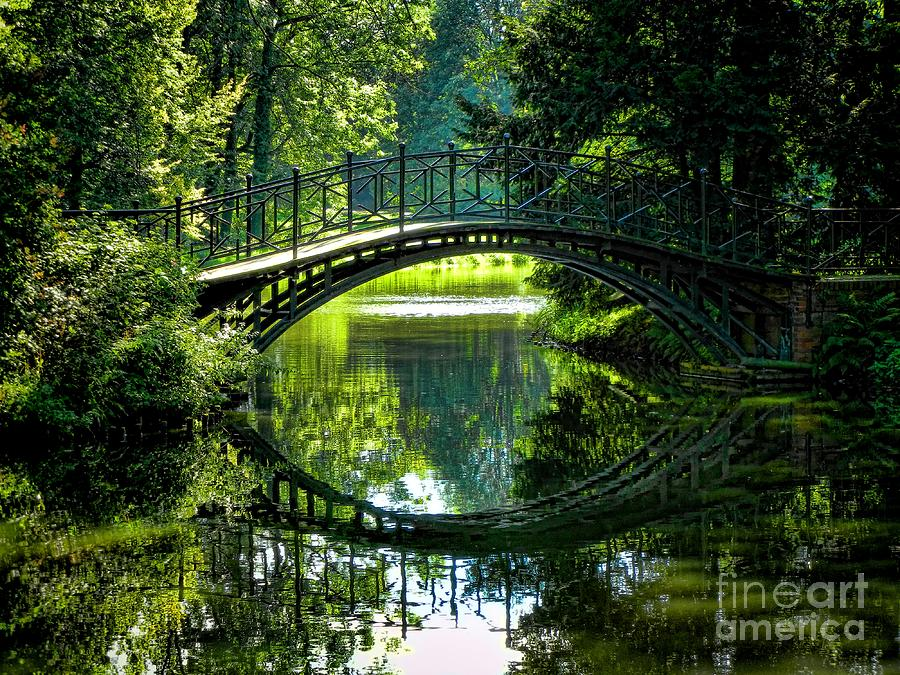 Reflection Paradise Photograph - Reflection Paradise by Mariola Bitner