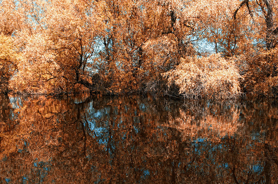 Reflections Photograph - Reflections 2 by Vessela Banzourkova