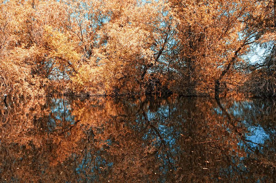 Reflections Photograph - Reflections 3 by Vessela Banzourkova