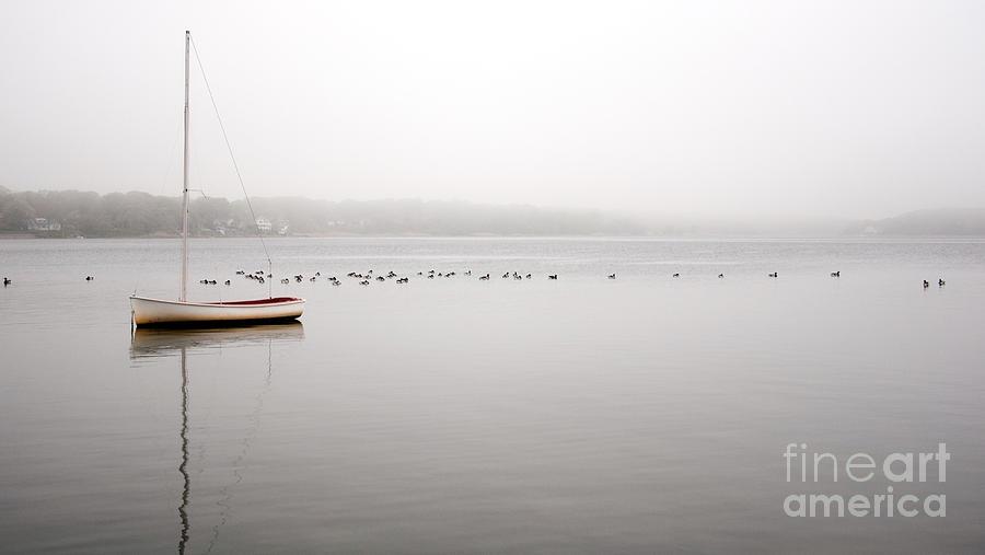 Fog Photograph - Reflections And Fog by Debra Fedchin