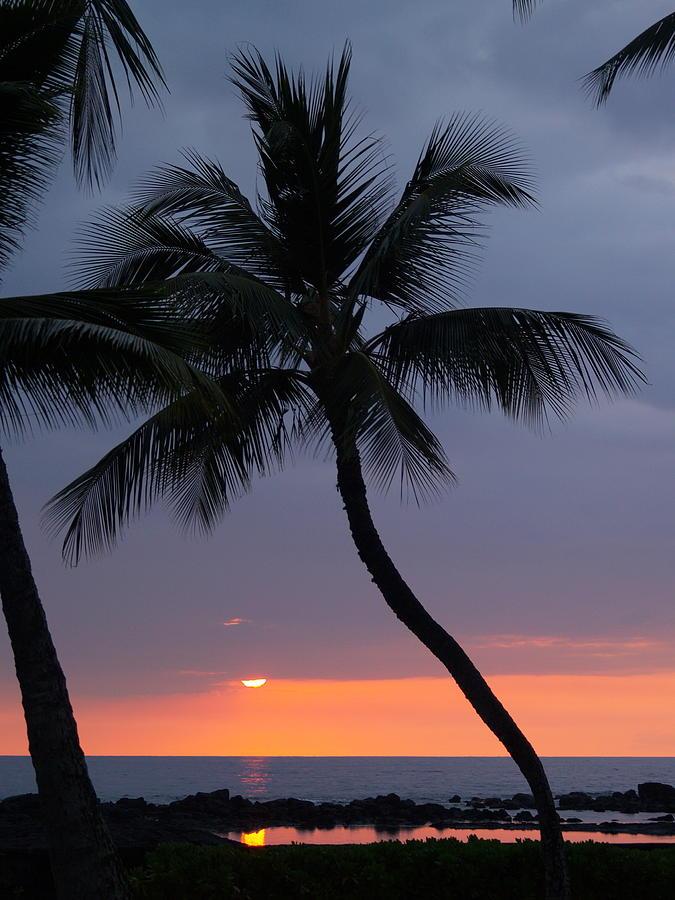 Sunset Photograph - Reflections by Athala Carole Bruckner