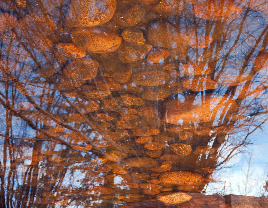 Pond Photograph - Reflections by Eric Rundle
