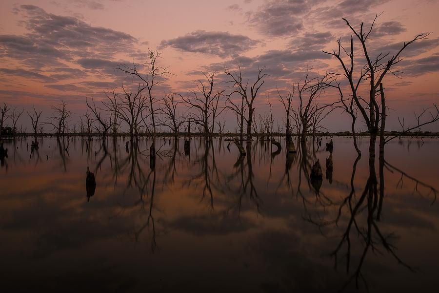 Water Photograph - Reflections by Garett Gabriel