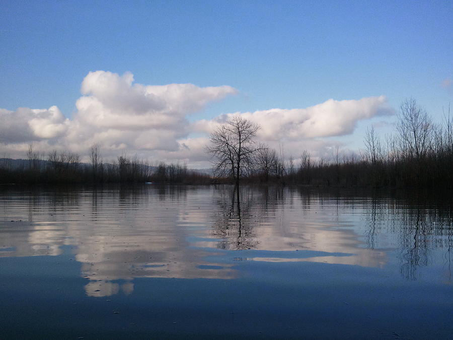 Clouds Photograph - Reflections by Heather L Wright