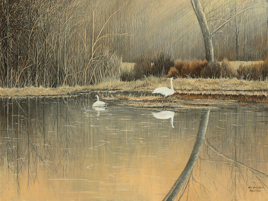 Arkansas Painting - Reflections by Mary Ann King
