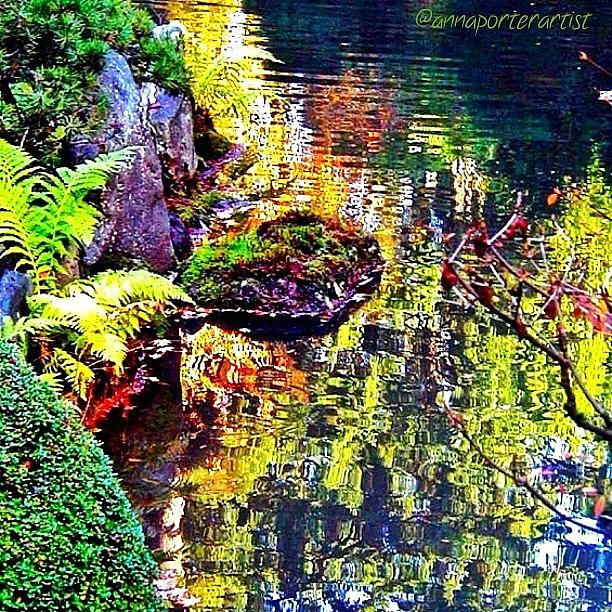 Autumn Photograph - Reflections Of Autumn by Anna Porter
