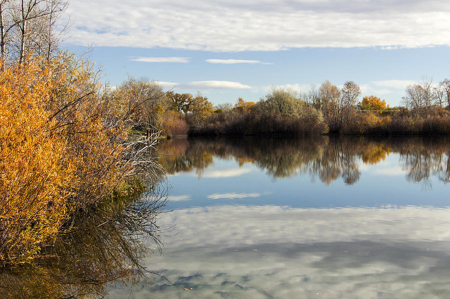 Fall Photograph - Reflections Of Clouds by Dana Moyer