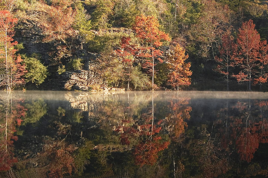 Fall Photograph - Reflections Of Fall by Cindy Rubin