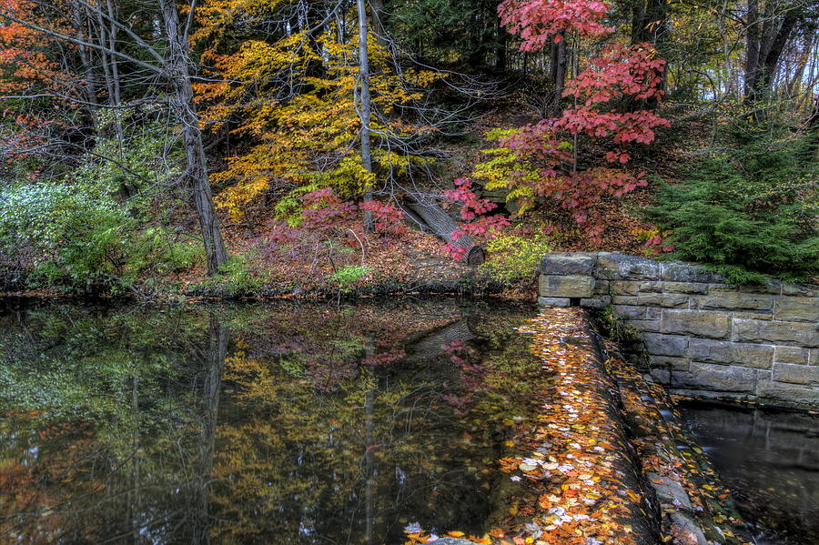 Fall Scenery Photograph - Reflections Of Fall by David Dufresne