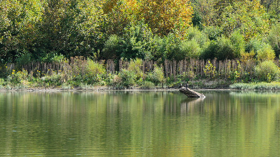 Landscape Photograph - Reflections of Fall by Diana Boyd