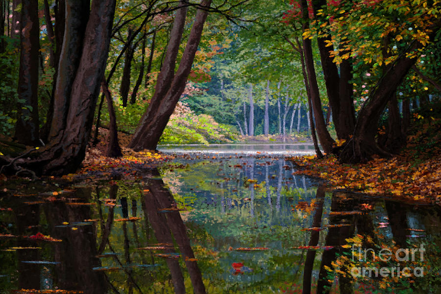 Fall Reflections by Jackie Case
