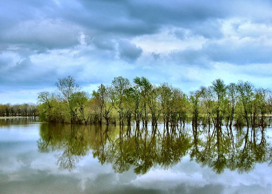 Spring Photograph - Reflections Of Spring by Julie Dant