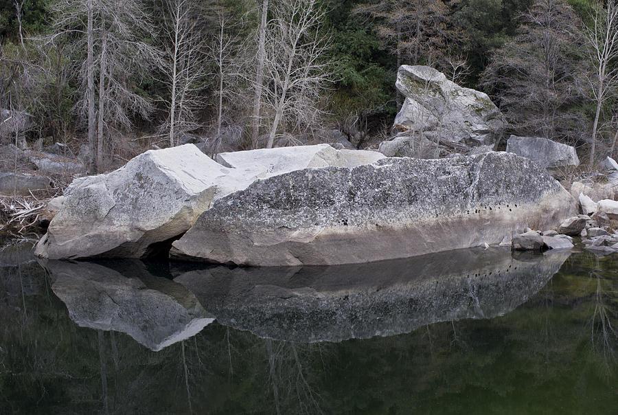 Yosemite Photograph - Reflections by Priya Ghose