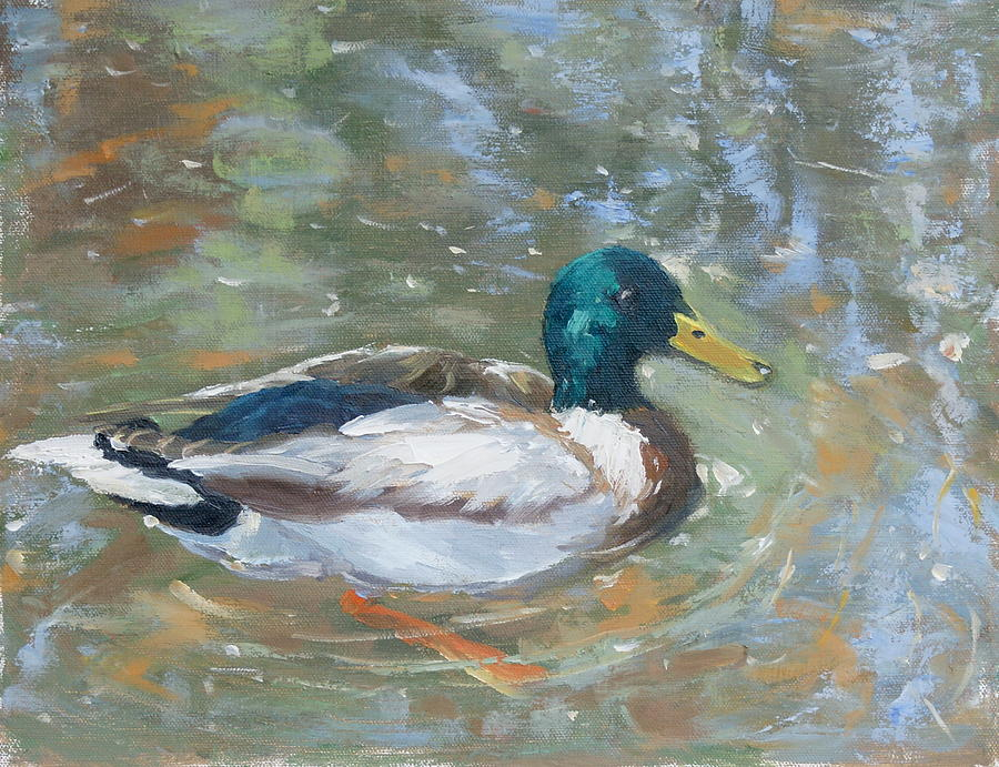 Mallard Painting - Reflections by Sandra Harris
