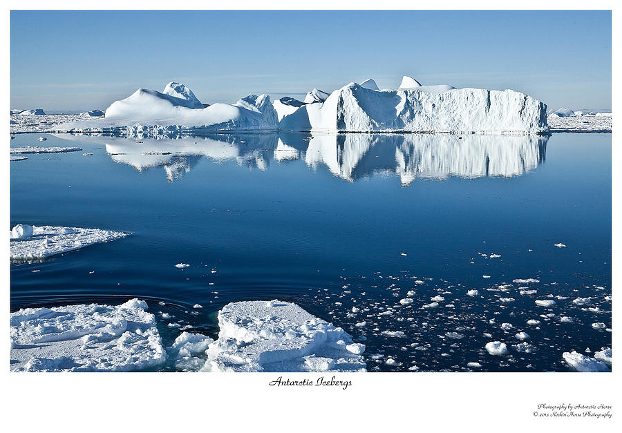 Antarctica Photograph - Reflective Icebergs by David Barringhaus