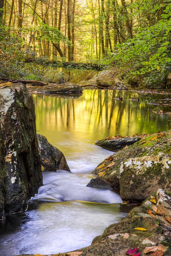 Appalachia Photograph - Reflective Pools by Debra and Dave Vanderlaan