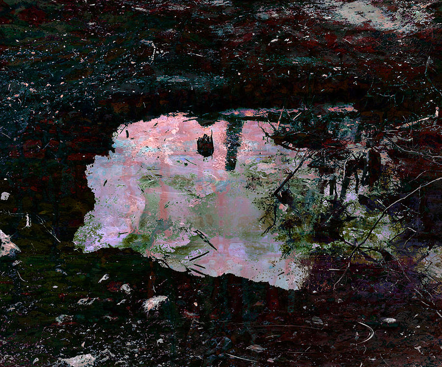 Weather Condition Painting - Reflective Skylight On A Small Pond Of Water # 1 by Miguel Conesa Osuna