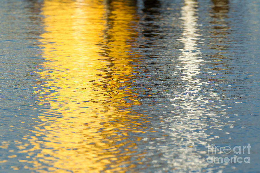 Yellow Photograph - Reflective Water Colors by Kelly Morvant