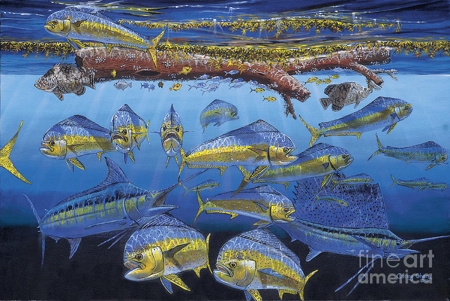 Fish Painting - Refuge Off00110 by Carey Chen