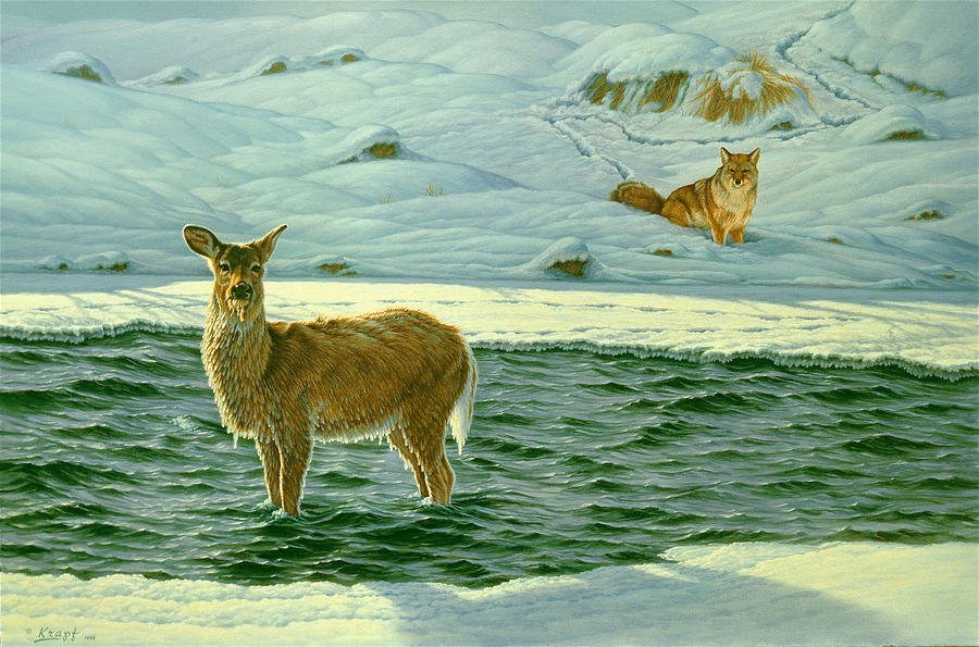 Wildlife Painting - Refuge by Paul Krapf