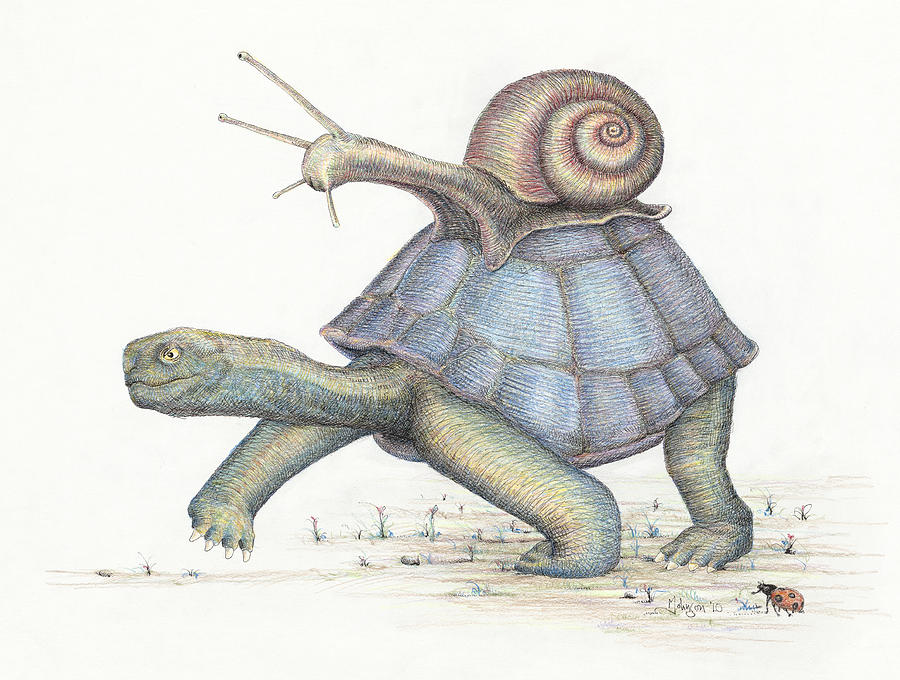 Whimsies Drawing - Relative Speed by Mark Johnson