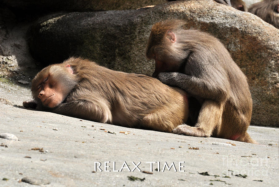 Relax time by Simona Ghidini