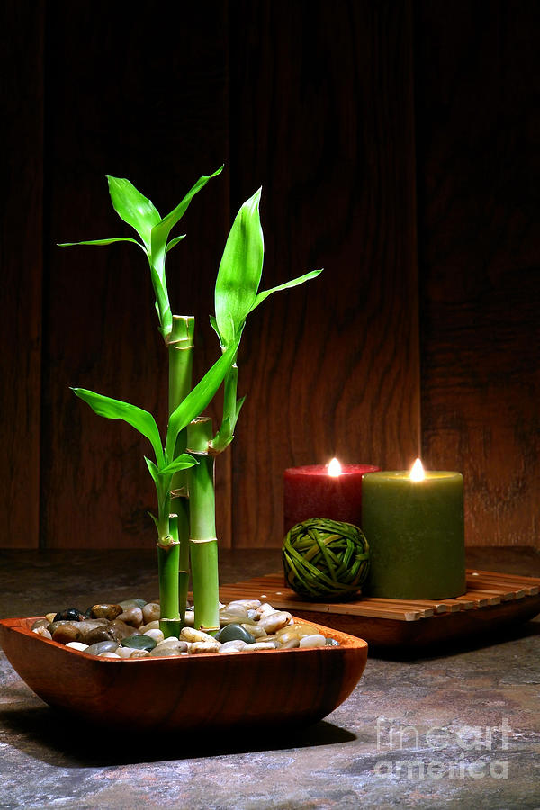 Bamboo Photograph - Relaxation And Meditation  by Olivier Le Queinec
