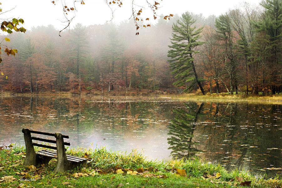 Relaxing Autumn Beauty Landscape Photograph By Christina Rollo