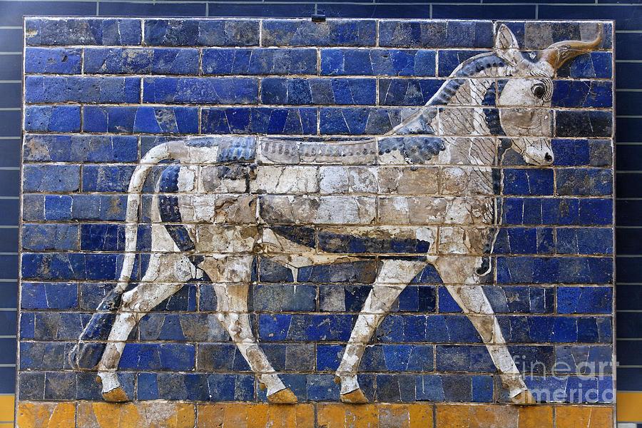 Ishtar Gate Photograph - Relief From Ishtar Gate In Babylon by Robert Preston