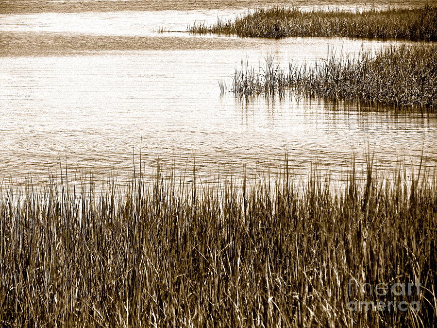 Landscape Photograph - Remember The Silence by Qs House of Art ArtandFinePhotography
