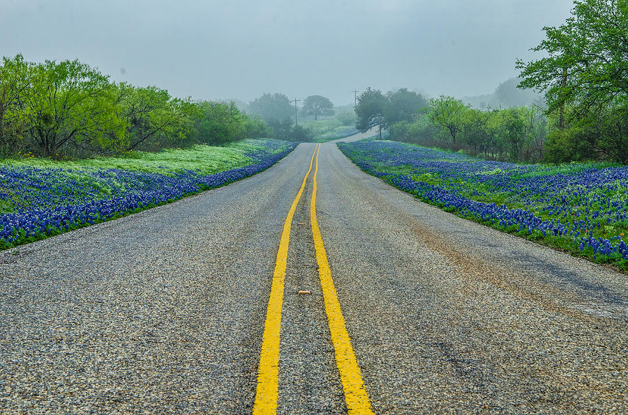 Texas Photograph - Remembering Spring In Texas by Jeffrey W Spencer