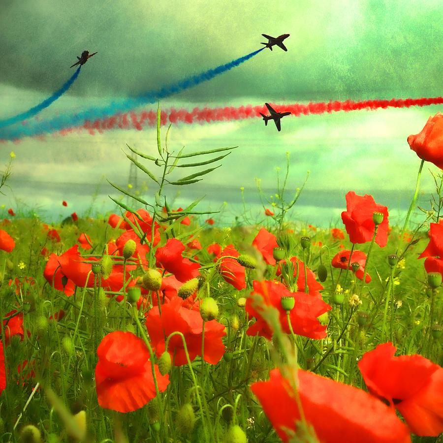 Poppy Fields Photograph - Remembrance  by Sharon Lisa Clarke