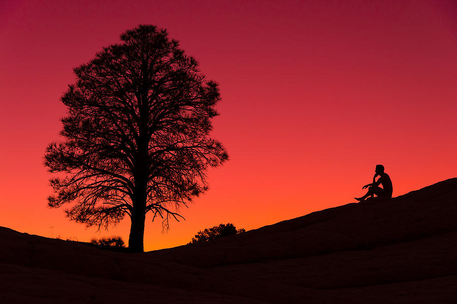 Vermilion Cliffs Photograph - Reminiscing by Chad Dutson