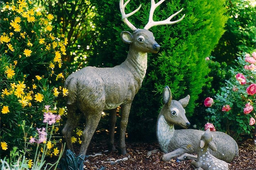 Replica Of Deer Family Photograph by Robert Bray