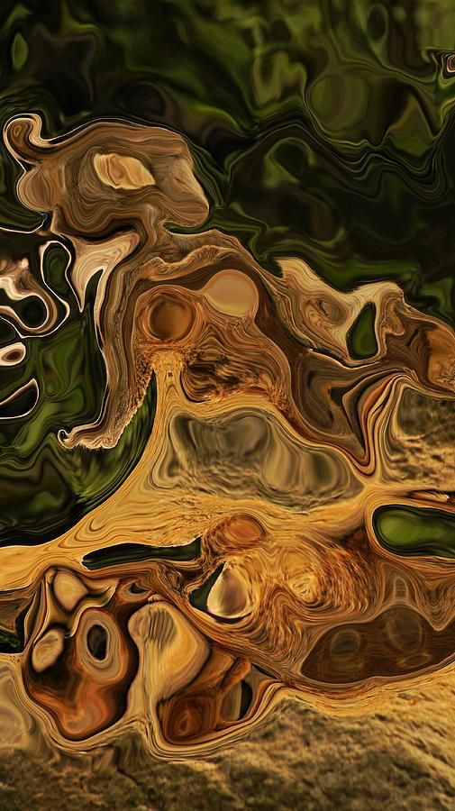 Earth Tones Photograph - Reptilian Ball by Daniele Smith