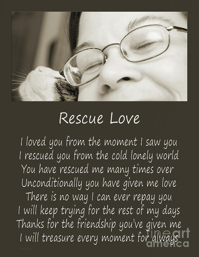 Animal Rescue Photograph - Rescue Love Adoption by Andee Design